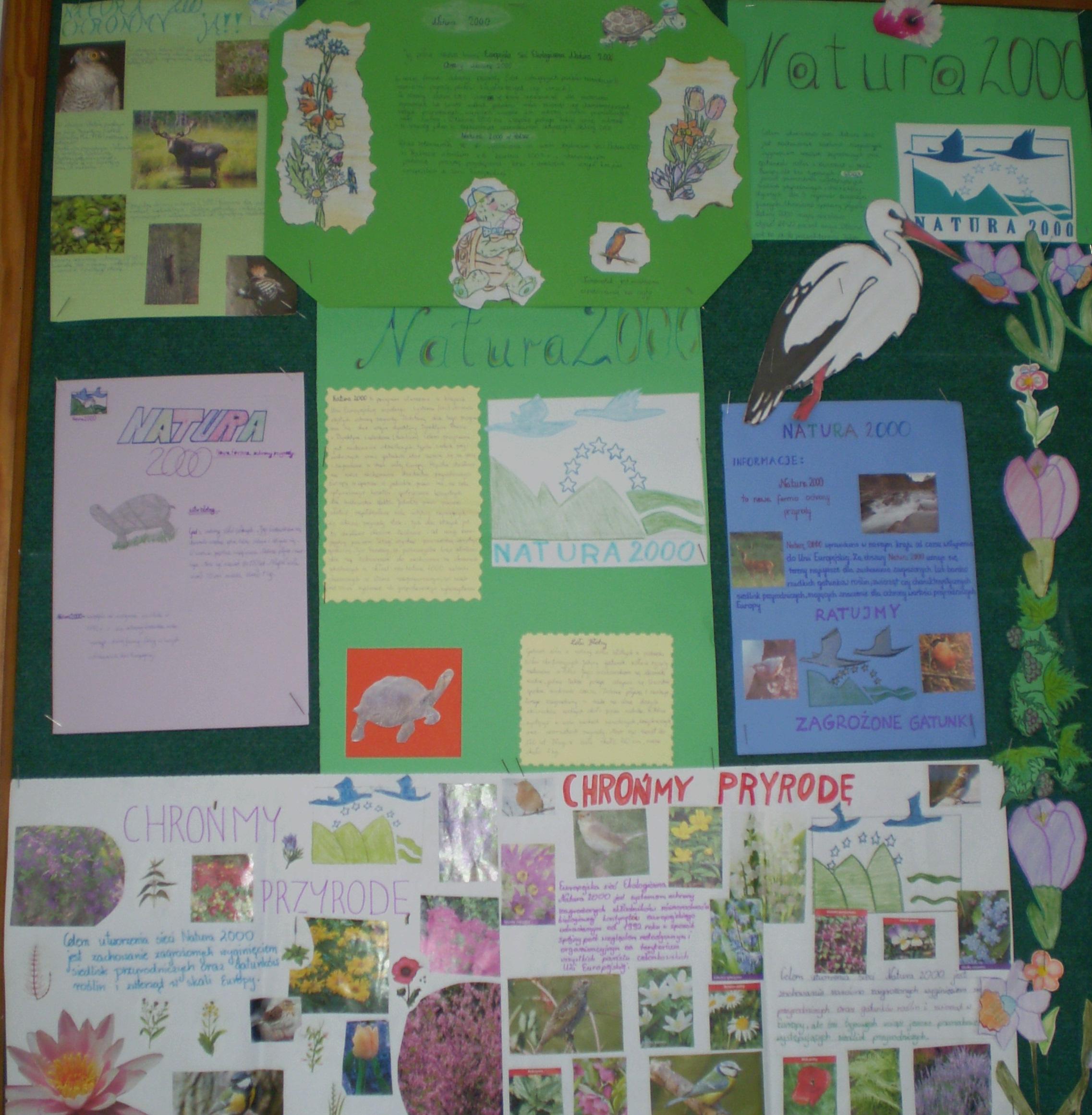 Natura 2000 I Inne Formy Ochrony Przyrody U źródeł Natury